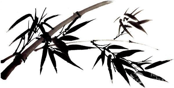 画出来要有竹子的感觉,墨色要透明.分享水墨竹的基本技法 .
