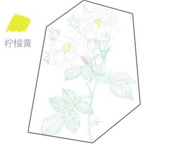 画 > 彩铅月季的绘画步骤(3)      (4)继续用浅紫色的铅笔把花朵剩下