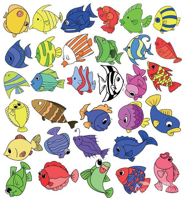 水生动物类简笔画