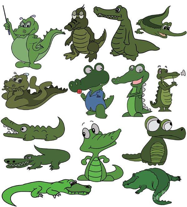 简笔画图集:水生动物篇(6)
