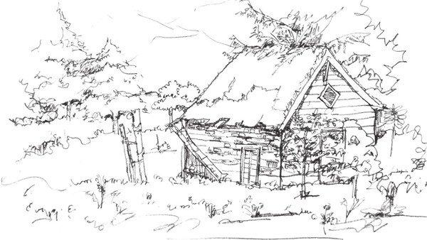 速写森林木屋植物