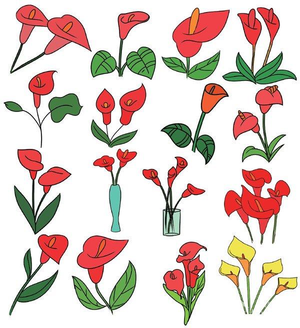 简笔画图集:花卉篇(5)