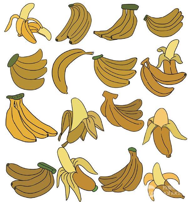 水果类简笔画 3