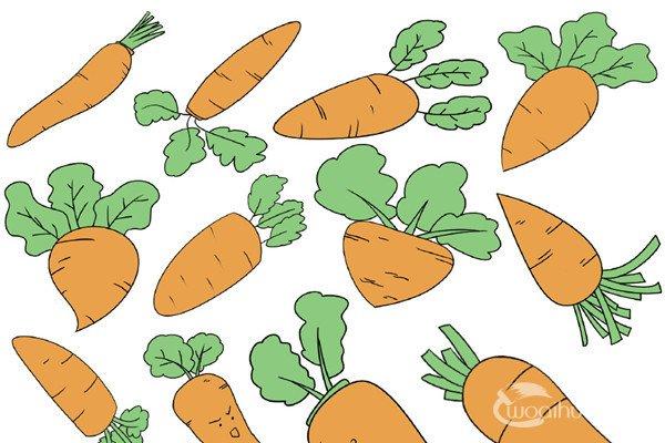 蔬菜类简笔画