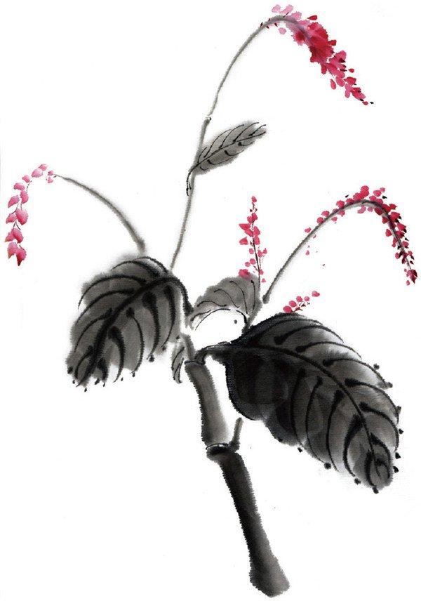 水墨红蓼的绘画步骤(3)