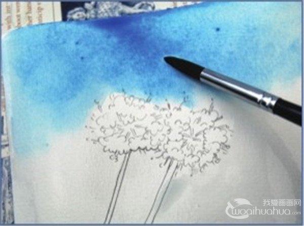 1、用铅笔先画出两支花。  纸巾的揉擦效果步骤一 2、用纯的天蓝色调和大量的水画出背景天空的颜色。  纸巾的揉擦效果步骤二  用画笔将多余的水分吸走 3、将卫生纸揉成一团在颜料还没有干的时候按压在画纸上,形成自然的云朵的效果。  纸巾的揉擦效果步骤三 4、用胭脂红分别调和大红色和青莲色画出花朵的颜色。  纸巾的揉擦效果步骤四 5、最后用青莲色加深花更有立体感。朵暗部的颜色,使整个花球。  纸巾的揉擦效果步骤五