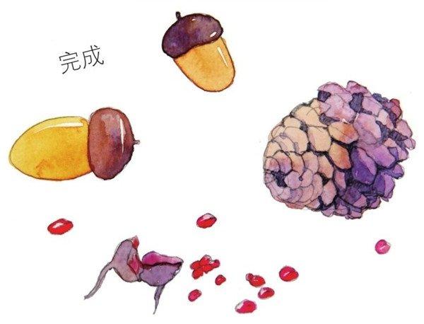 水彩纵透视法松果与橡子绘画步骤五