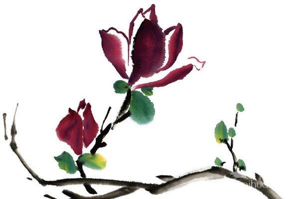 水墨紫玉兰的绘画技法