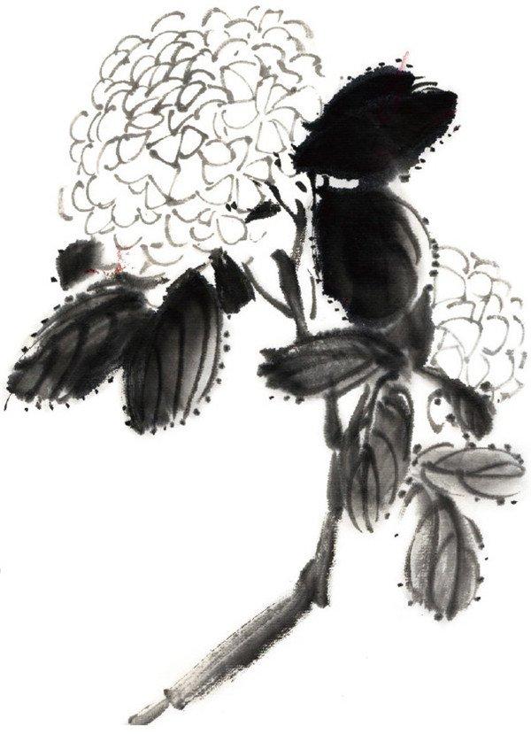 水墨绣球花的绘画步骤三