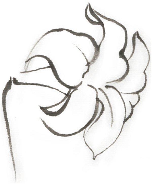 水墨百合的绘画步骤(2)_国画教程_学画画_我爱画画网