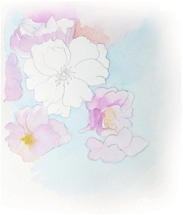 水彩淡化法樱花的绘画技法(3)_水彩画教程_学画画_我