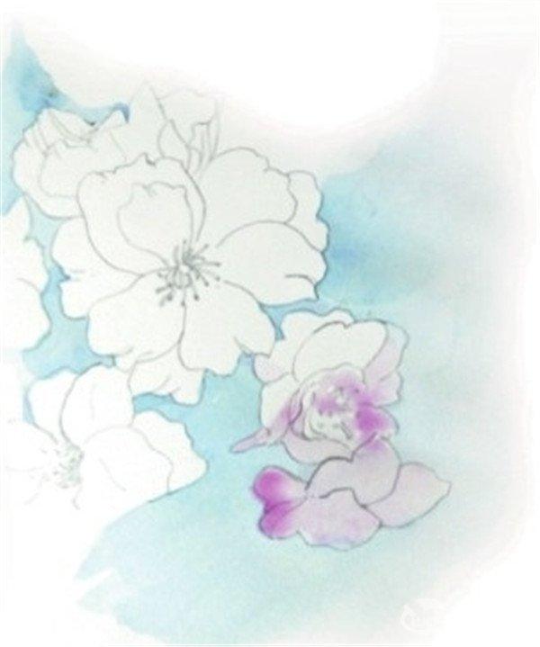 水彩淡化法樱花的绘画技法(2)