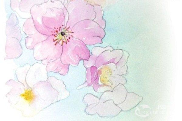 水彩淡化法樱花的绘画技法