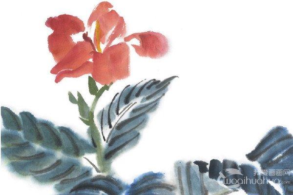 水墨美人蕉的绘画步骤