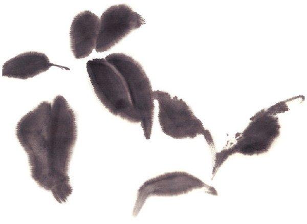 水墨桂花的绘画步骤一-水墨桂花的绘画技法