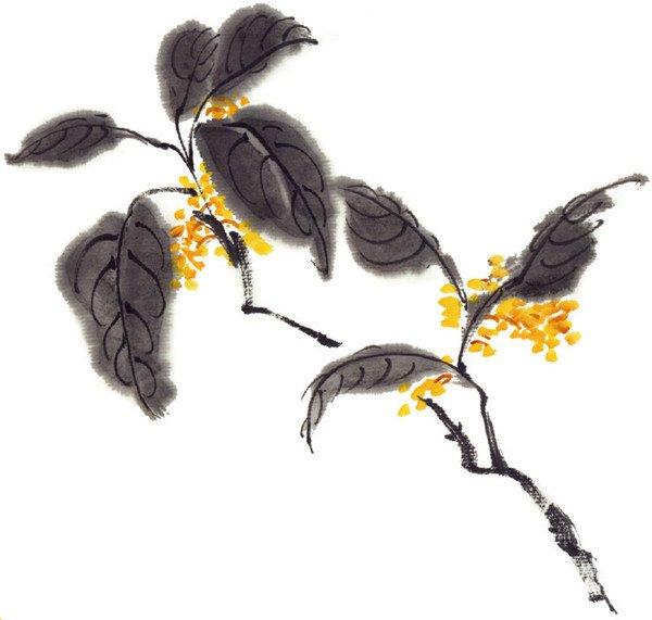 水墨桂花的绘画步骤三