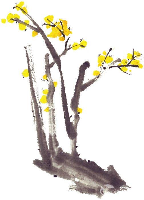 水墨腊梅的绘画步骤三