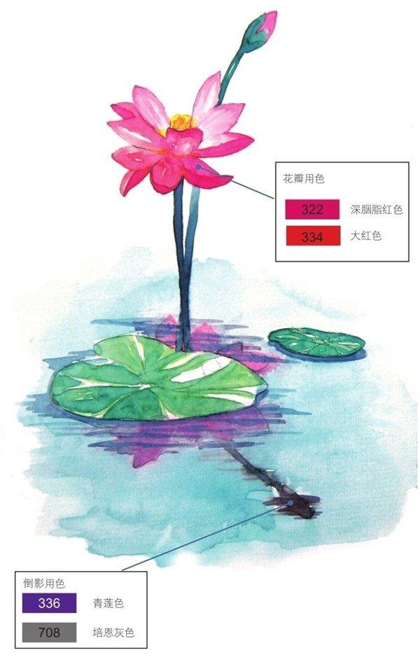水彩叶子教程步骤图