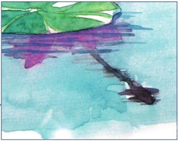荷花倒影水彩绘画技法 3
