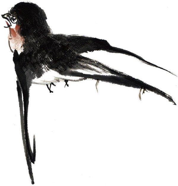 水墨燕子的绘画步骤三