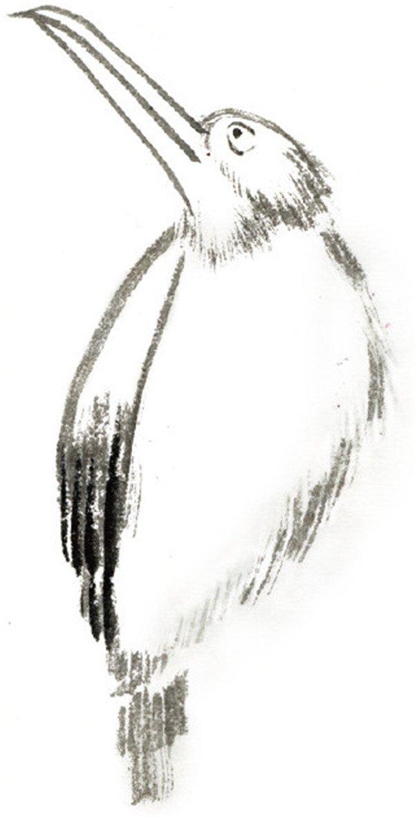 用赭石染嘴,用石绿染头、翅膀、尾巴,用朱砂染腹部.