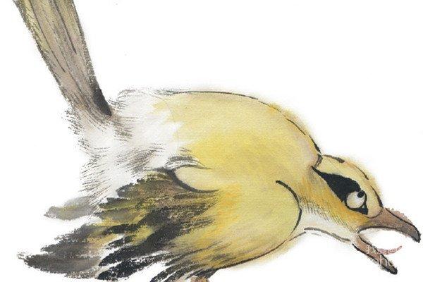 水墨黄鹂的绘画技法