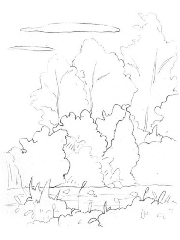 水彩树丛绘画步骤一
