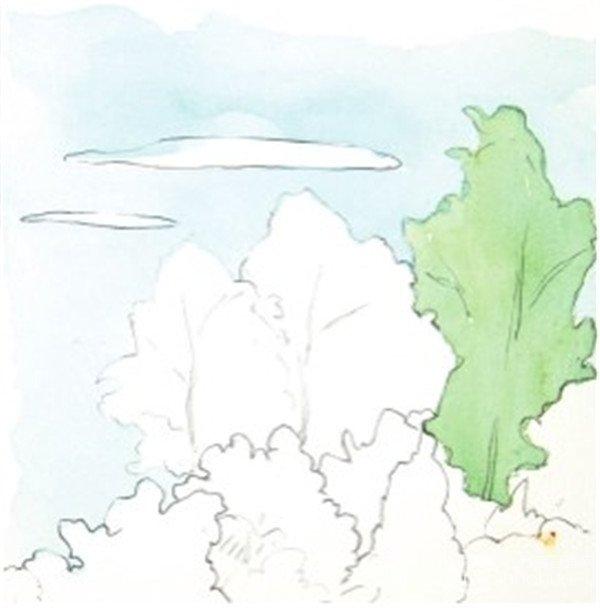 水彩树丛绘画步骤    1