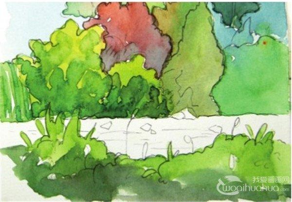 水彩树丛绘画步骤七