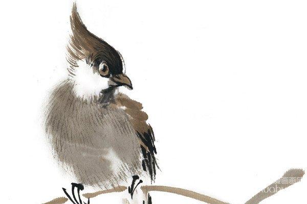 水墨太平鸟的绘画技法
