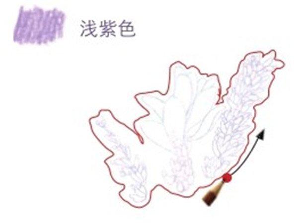 > 彩铅薰衣草的绘画技法(2)      二,彩铅薰衣草的绘画步骤    1