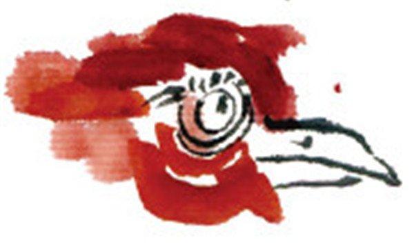 学画画 国画教程 禽鸟虫鱼 > 国画母鸡的绘画教程      母鸡,头小,眼