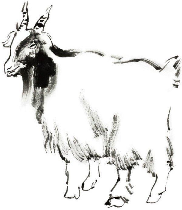 国画羊的绘画步骤_国画教程_学画画_我爱画画网