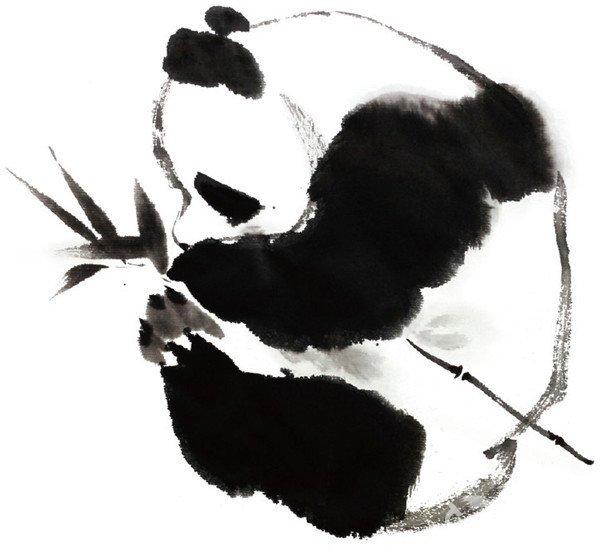 水墨熊猫的绘画步骤三 大熊猫已在地球上生存了至少800万年,被誉为活