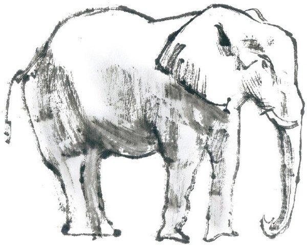 国画大象的绘画步骤(2)