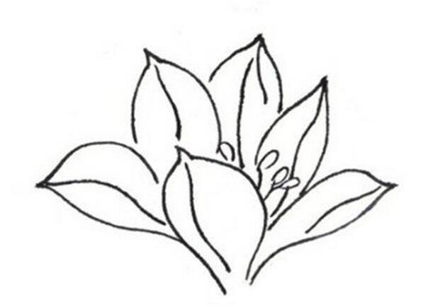 花朵侧面矢量图素材