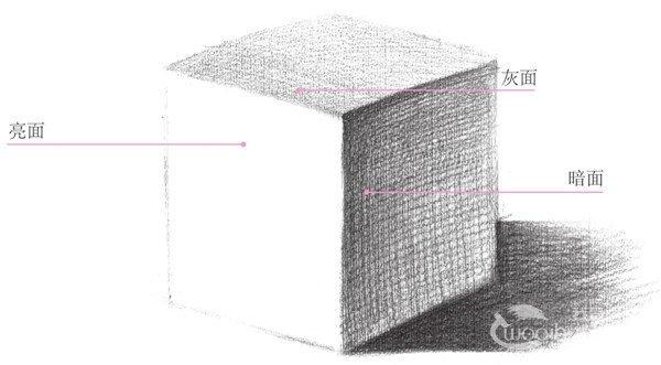 技法,目前也有不少素描初学者还没完全掌握的,现在为大家做一个简单的梳理,希望可以帮到大家更快把握到素描的基础技法。 三大面:是指具有一定形体结构、一定材质的物体受光的影响后所产生的大的明暗区域(亮面、灰面、暗面)划分。  素描三大面 亮面:受光线照射较充分的一面称之为亮面。 暗面:背光的一面称之为暗面。 灰面:介于亮面与暗面之间的部分称之为灰面。  素描明暗两大面 明暗交界线、反光、投影属于暗部,高光和中间调属于亮部,这就是明暗两大面。反光在一般情况下比中间调暗。