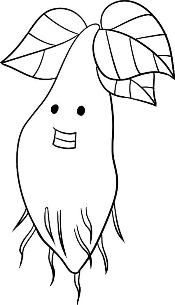 趣味简笔画:幼嫩的小树绘画步骤(3)