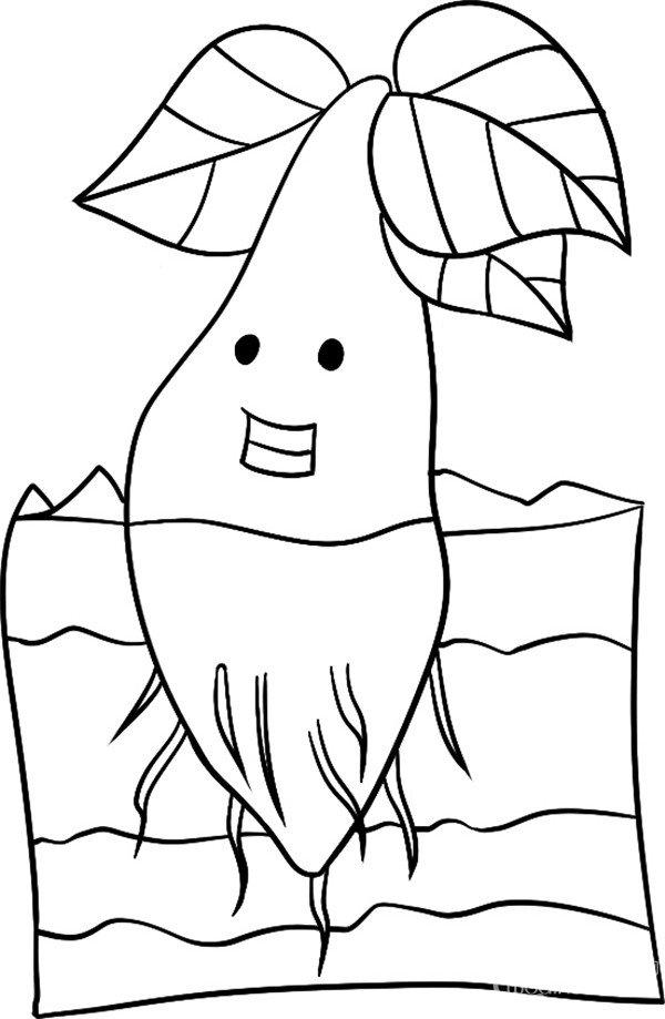 趣味简笔画:幼嫩的小树绘画步骤(4)