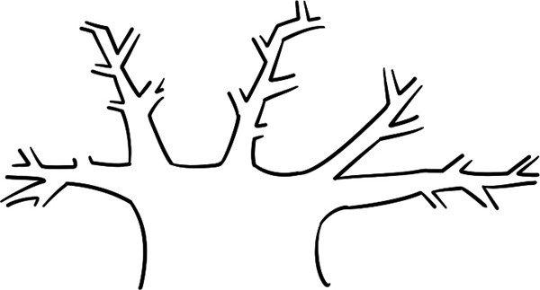 学画画 儿童画教程 简笔画 > 趣味简笔画:茂密的果树绘画步骤(2)
