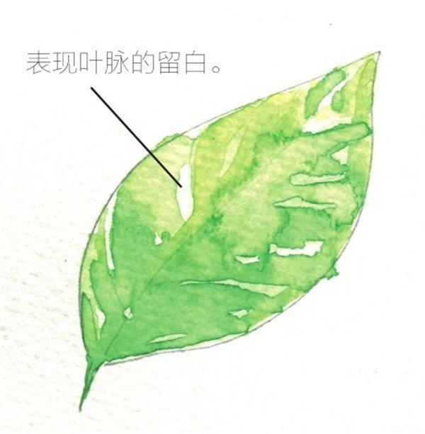 水彩中的留白技巧_水彩画教程_学画画_我爱画画网
