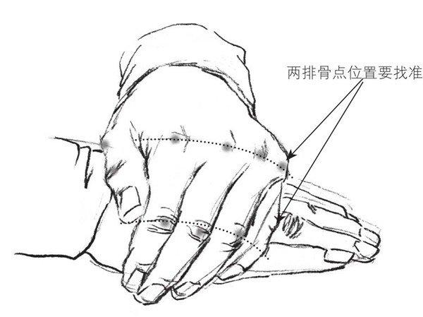 3、在前面几何形体意识的引导下应该进一步画出手的轮廓线,要体现出每个骨点的位置。  速写手的绘画步骤三 4、这一阶段属于塑造环节,也是技法的运用阶段,我们一定要画出几个部分。一个是手纹(需要提笔勾线),另一个是骨点的蹭涂。这一部分要注意顺着结构的形体关系来蹭涂,蹭低点留高点,不要涂过。在技法的运用上注意笔头的转动用不同的侧面涂蹭;再有就是指甲要勾好,一般会忽略指甲的透视关系。如果一个手指的结构是对的,但是指甲的透视勾错了也会影响效果。  速写手的绘画步骤四