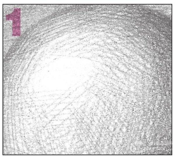素描 球体绘画技法 5图片