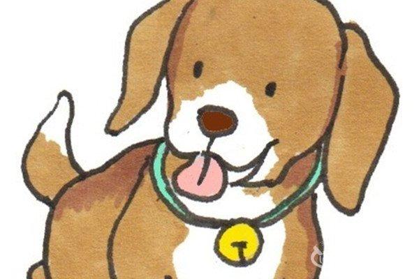 卡通画:田园犬的绘画步骤