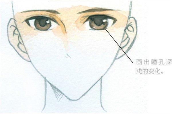 用水彩表现眼睛的光泽