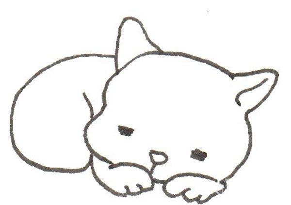 树洞里的猫咪的绘画步骤      猫为补充精力睡眠时间比较其它动物长久