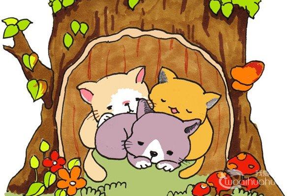 卡通画:树洞里的猫咪的绘画步骤