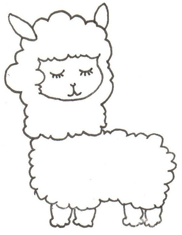 卡通画:羊驼的绘画步骤(4)