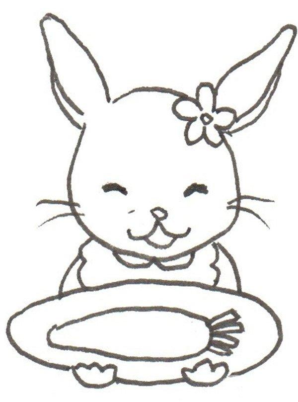 卡通画:小白兔的绘画教程