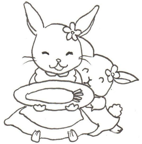 卡通画小白兔的绘画步骤五